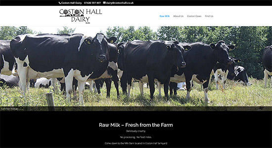 Coston Hall Dairy - Caston Web Designs Portfolio