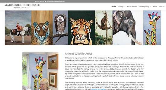 Marianne Nightingale - Caston Web Designs Portfolio